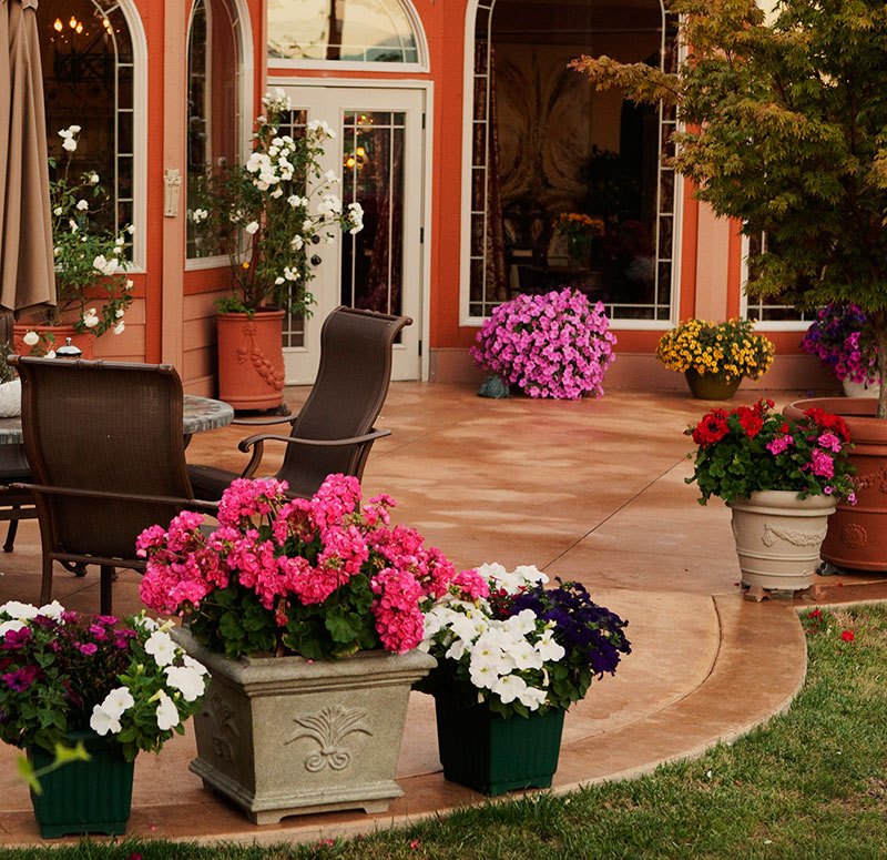 Expansive french country patio scc for French country websites